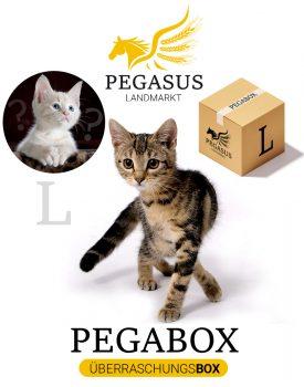 Pegabox L Überraschungsbox für Katzen