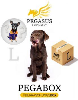 Pegabox L Überraschungsbox für Hunde