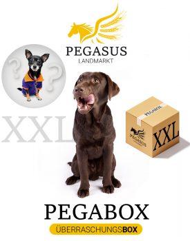 Pegabox XXL Überraschungsbox für Hunde