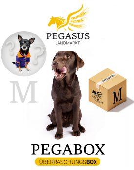 Pegabox M Überraschungsbox für Hunde