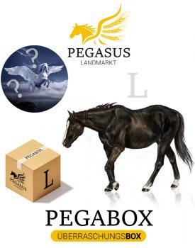Pegabox L Überraschungsbox für Pferde