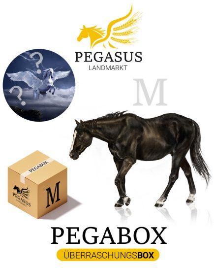 Pegabox M Überraschungsbox für Pferde