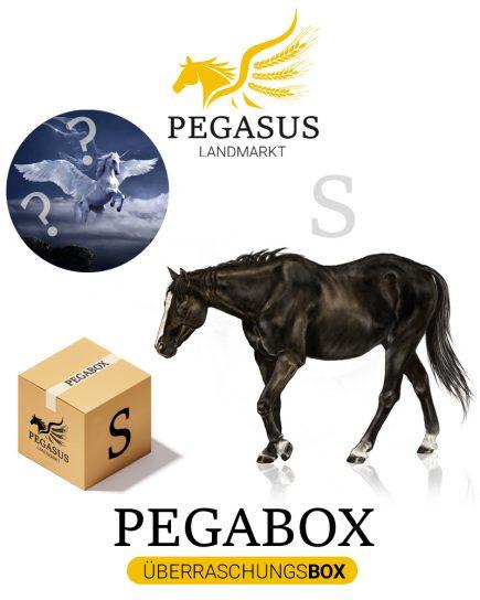 Pegabox S Überraschungsbox für Pferde
