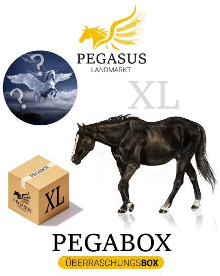 Pegabox XL Überraschungsbox für Pferde