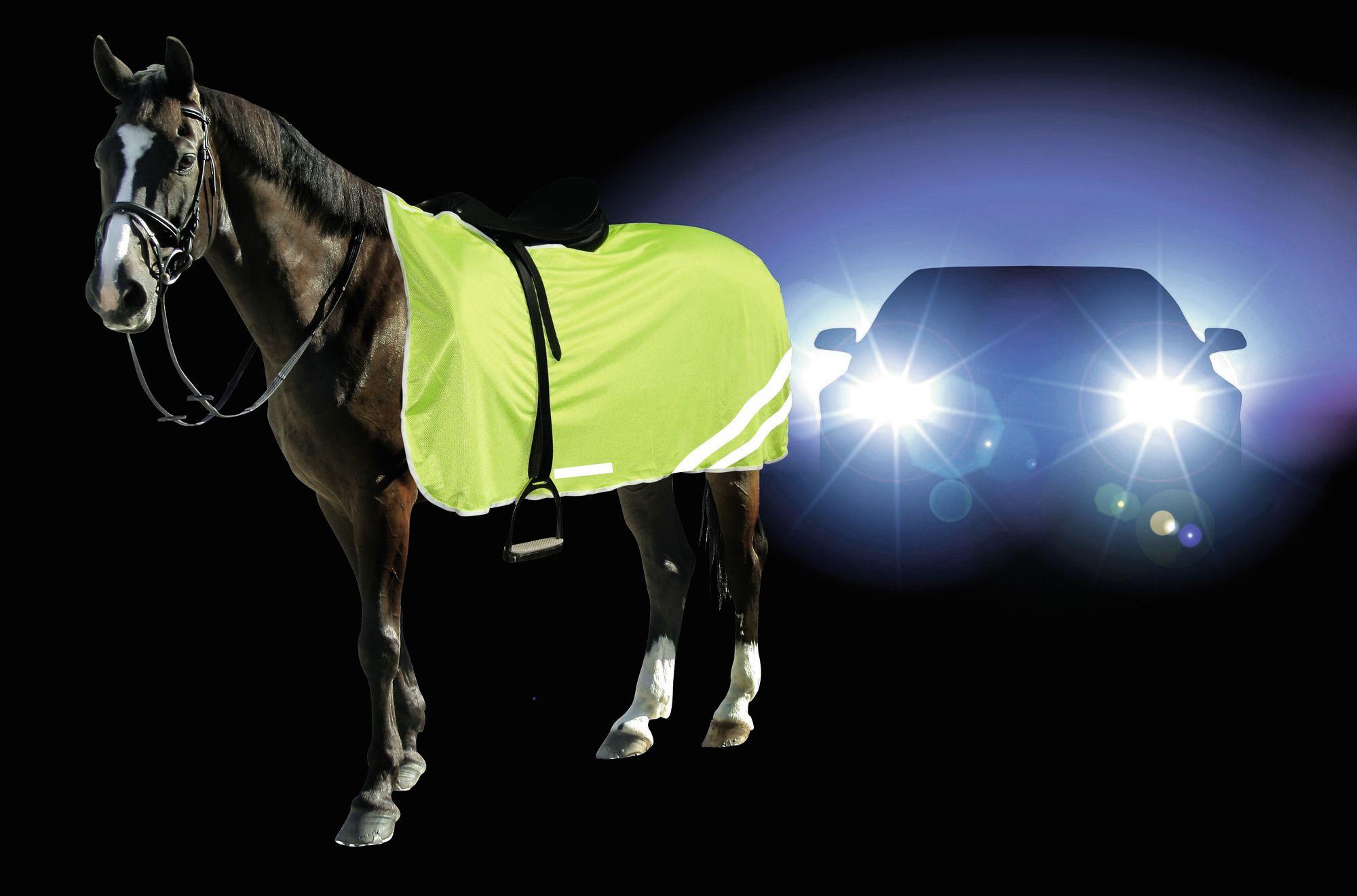 Sicherheit durch Sichtbarkeit beim Reiter